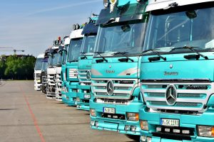 Row of lorries ready for inspection